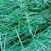 供应绿色PET打包带毛料